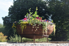 Focal Point Planting
