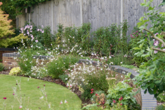 Cover unwanted fence panels with a hedge
